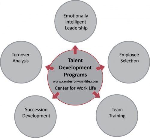 talent development programs